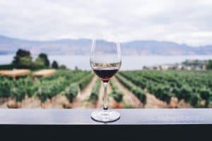 Comment conserver le vin ? Toutes nos astuces !